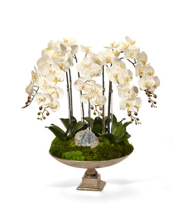 Orchid and Crystal in Large Silver Urn  WHITE