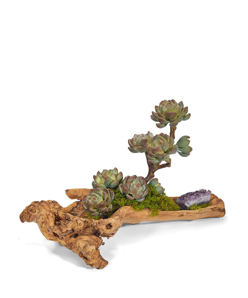Baby Wood Log with Sedums