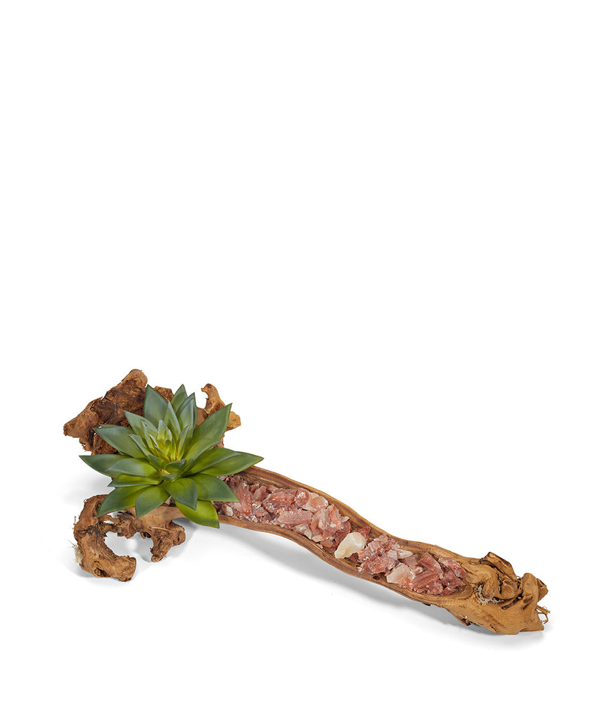 Baby Wooden Log with Succulents & Stones