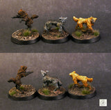 Post Collapse Dogs (3 Pack)