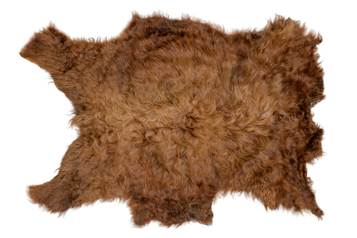 American Highland Cattle Hair-on-Hides