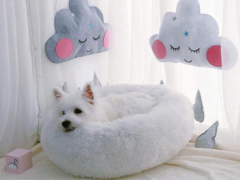soft dog bed westie