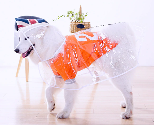 Big Doggy Rain Coat