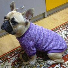 Doggy Sweater