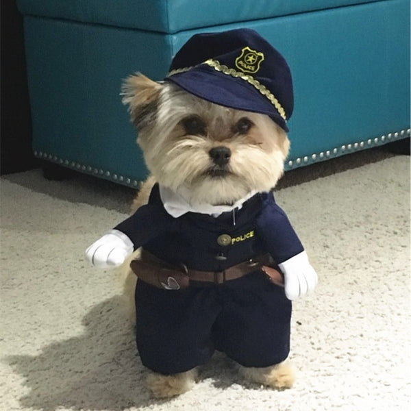 Puppy Costumes