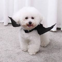 Bat Wings Harness