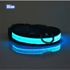 Night Time LED Collar