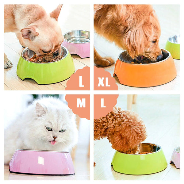 Colorful Food Bowls
