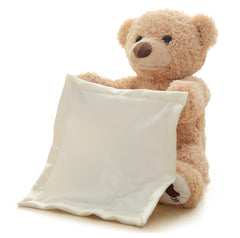 Peek-a-Boo Talking Teddy Bear for Kids