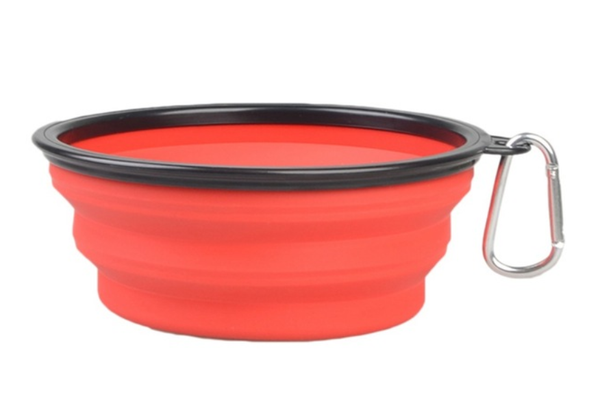 Collapsible Food Bowl