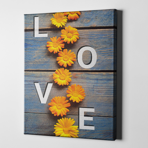Orange Daisy Love Canvas
