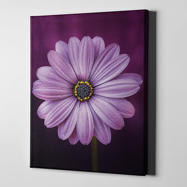 Contemporary art, flower art, flower canvas, modern art, flower painting, Canvas, prints, high end prints, home décor, décor, wall art, large prints, small prints, modern wall art, home staging art, ready to hang art, easy mounting, canvas heaven, Flower prints, flowers,