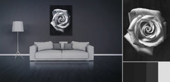 rose prints, roses, black and white prints, black and white flower canvas, floral art, large rose, black and white rose canvas