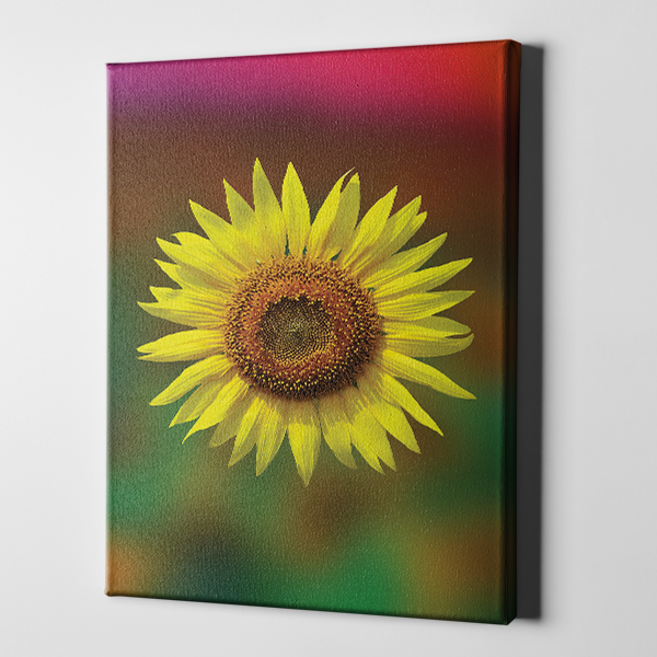 Sunflower Floral
