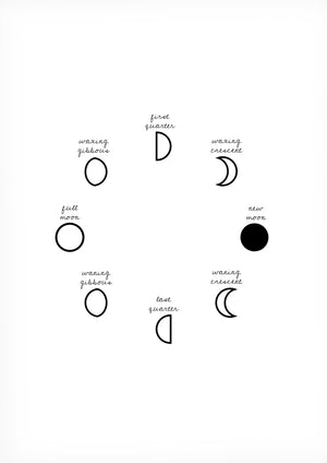 Moon Phases -juliste