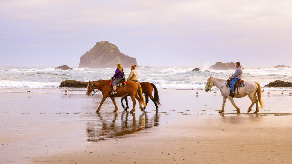 Horseback Riding in the U.S: 7 Best Trails
