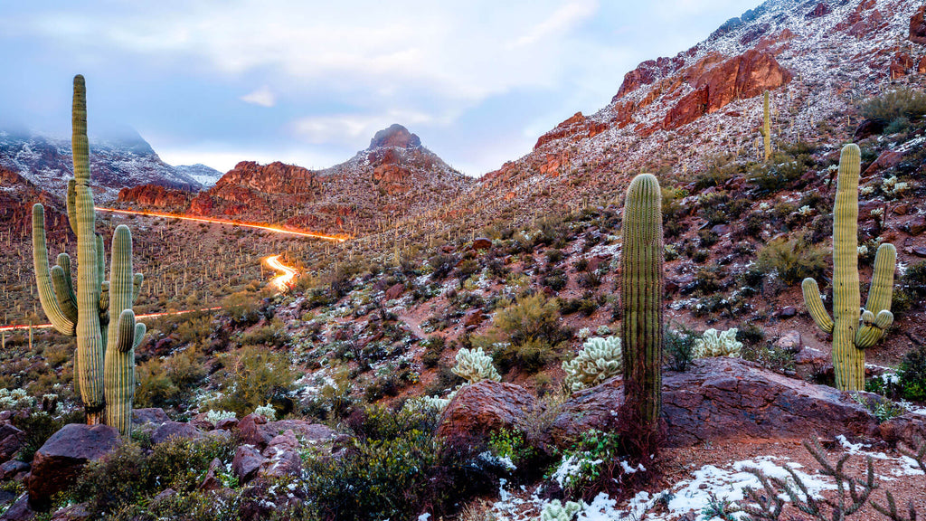 10 Best U.S. National Parks to Visit This Winter