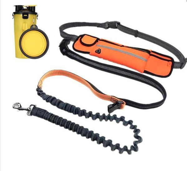 Dog Leash, Black 3 Pockets Waist Belt - Outdoor Sports Store - Eaglesong Outdoor Retailer