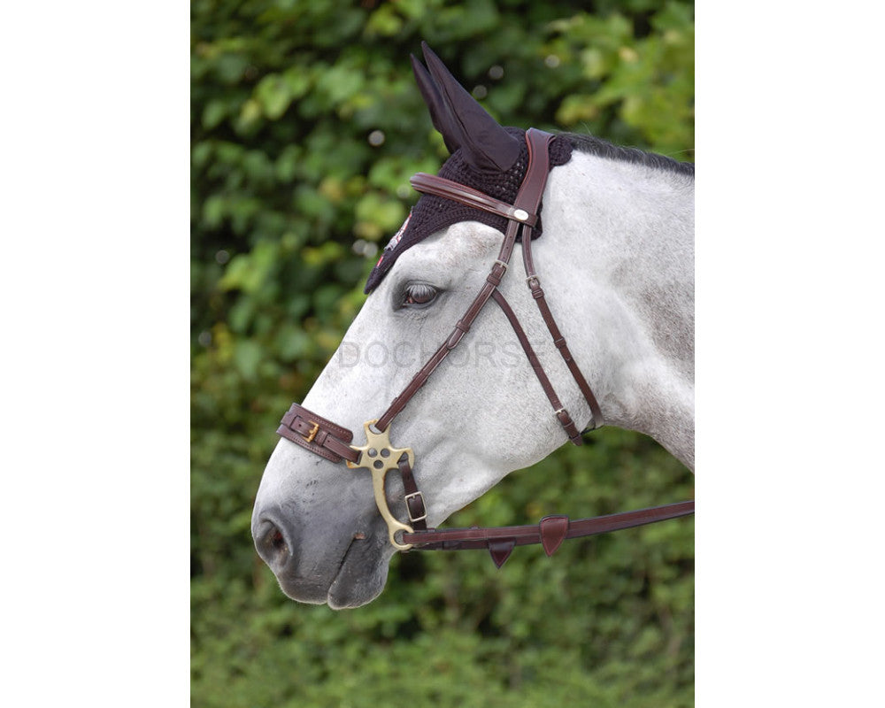 Shop Dyon Hackamore Bridle - Malvern Saddlery