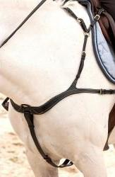 Dyon Anatomic Breastplate - Malvern Saddlery