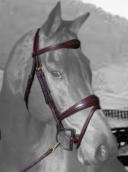 Dy'on Anatomic Flash Jumper Bridle - Malvern Saddlery