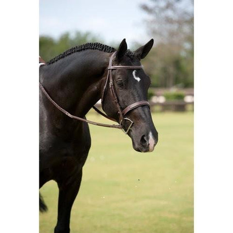 Dy' on Wide Nose Hunter Bridle - Malvern Saddlery