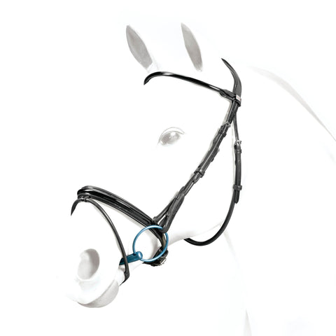 Equipe Rolled Flash Dressage Bridle - Malvern Saddlery