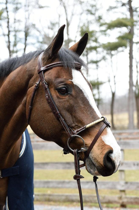 Equipe Rope Nose Jumper Bridle - Malvern Saddlery