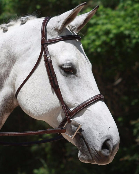 Shop KL Synergy Hunter Bridle - Malvern Saddlery