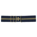 Shop Ellany  Stripe Belt w/Gold Surcingle Closure - Malvern Saddlery