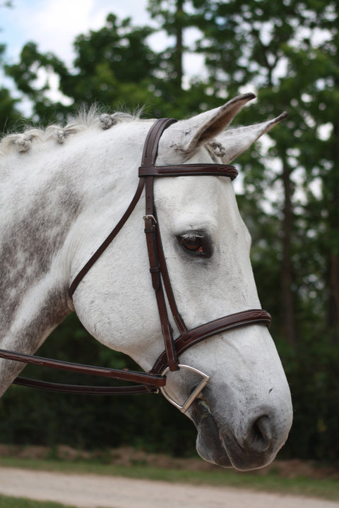 Shop KL Italia Middleburg Hunter Bridle - Malvern Saddlery