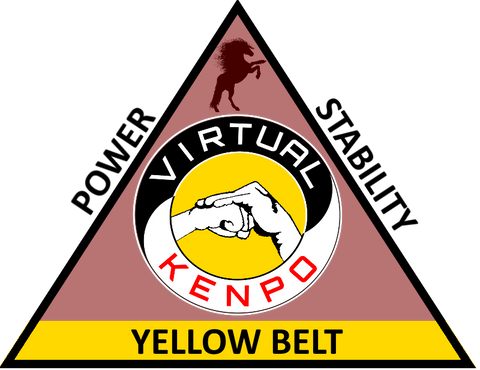 Yellow Belt Training Manual