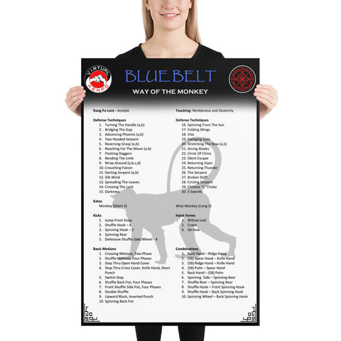 Blue Belt Quick Reference Poster