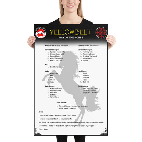 Yellow Belt Quick Reference Guide Poster
