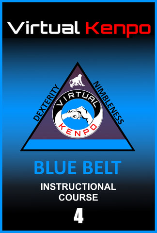 Blue Belt Training Course