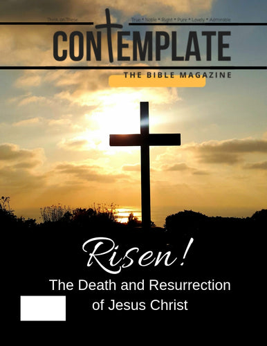 Cover of issue #8 shows a cross in the foreground with a golden sunset  over the ocean in the background.