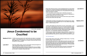Issue #14: Risen! The Death and Resurrection of Jesus Christ (NASB 2020 Translation)
