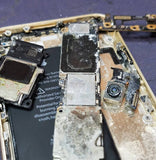 iPhone Water Damage Diagnostic