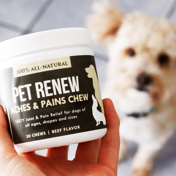 Pet Renew Chews for Dogs
