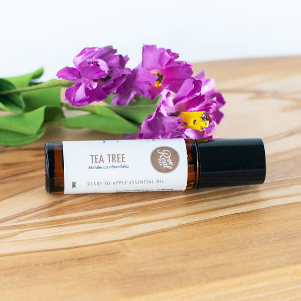 Tea Tree Ready-to-Apply Essential Oil