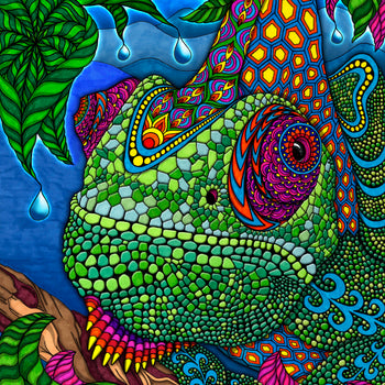 The Chameleon Puzzle