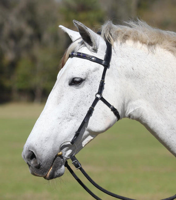 Dressage Naturally Browband
