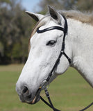 Dressage Naturally Bridle