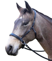 Riding Halter (Dressage Naturally Bitless Bridle)