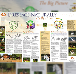Dressage Naturally Big Picture Poster