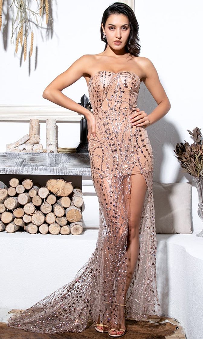 Gazing At The Moon Nude Rose Gold Silver Glitter Geometric Pattern Strapless Sweetheart Neck Sheer Mesh High Slit Maxi Dress