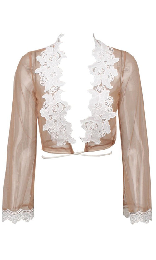 Sheer Harmony Khaki Nude Sheer Mesh Lace Trim Long Sleeve Plunge V Neck Tie Wrap Crop Blouse Top