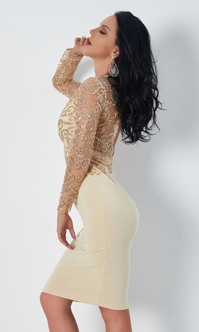 Ruling Everything Sheer Mesh Glitter Swirl Pattern Long Sleeve Crew Neck Cut Out Back Bodycon Midi Dress - 2 Colors Available