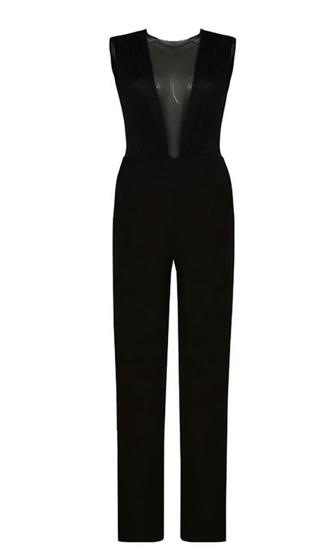 Opposites Attract Sleeveless Sheer Mesh Plunge V Neck Straight Leg Jumpsuit - 2 Colors Available