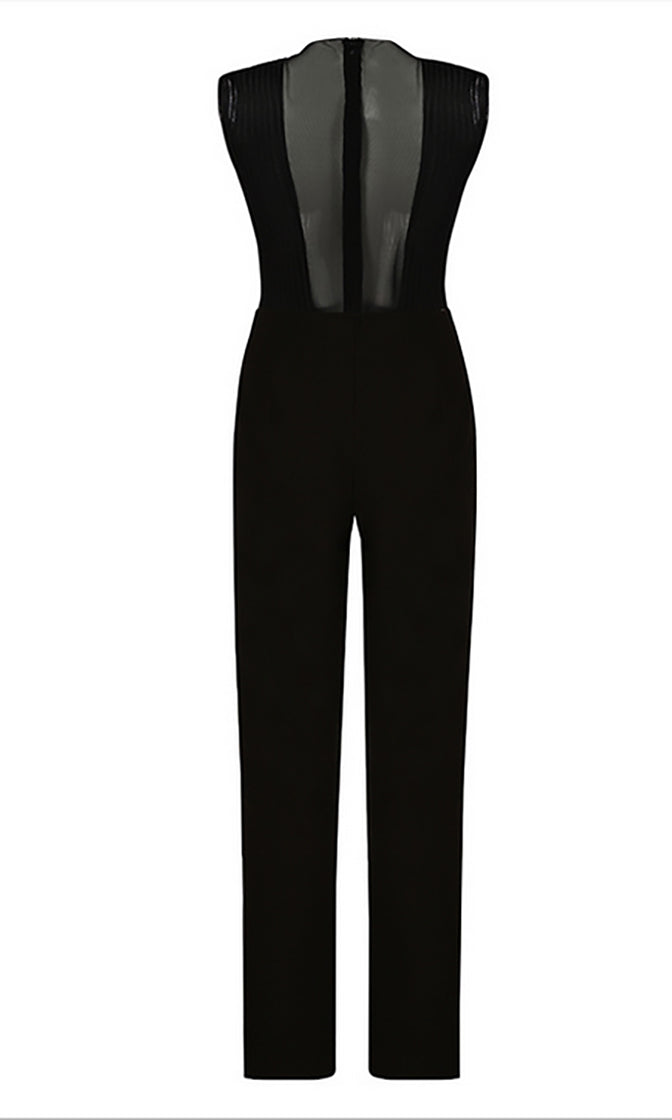 Opposites Attract Sleeveless Sheer Mesh Plunge V Neck Straight Leg Jumpsuit - 2 Colors Available - Sold Out